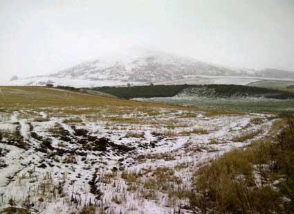 snow04525