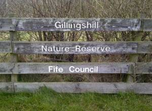 Gillingshill04674