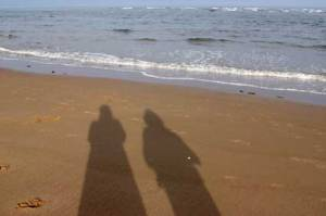 shadows6758