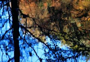 reflections7152
