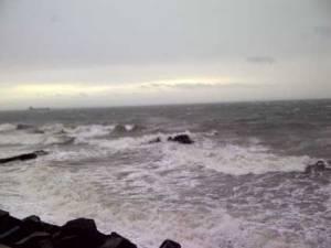 windy05792
