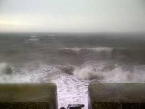 windy05795