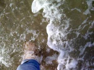 paddle-06312