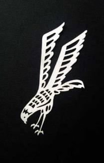 eagle-06438