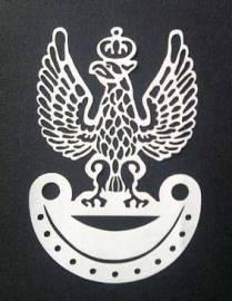 eagle-06440