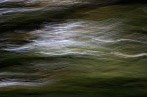 blur_4042