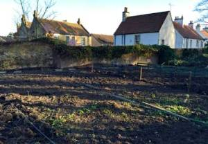 allotments_4957