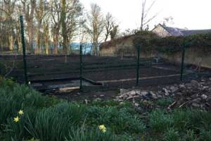 allotments_4960