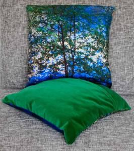 cushion4189