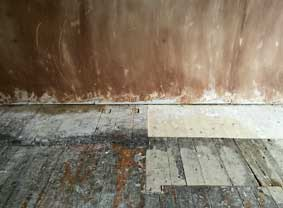 plaster1