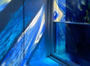 window3664