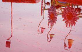 colour_9762