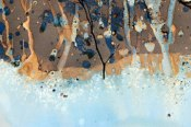 cyanotypes_3410