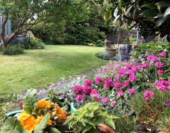 garden_0335