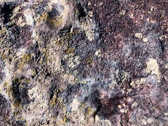 rocks_0765