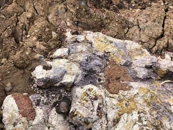 rocks_9665